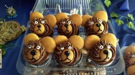 bear cupcake, homemade by a Du Bois