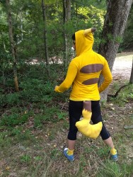 Wild PIKACHU appeared!