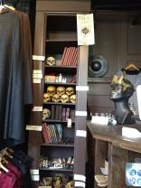skulls and journals